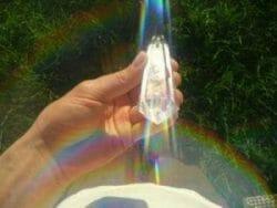 Vogel Extractie Kristallen